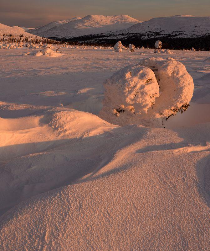 зима, горы, урал, деревья, снег, рассвет, заструги, снежные фигуры, антон селезнев, фактура, цвет Первые лучиphoto preview