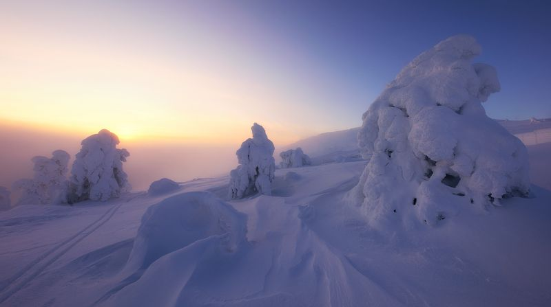 finland, lappi, lapland, snow, winter Вечер в Лапландииphoto preview
