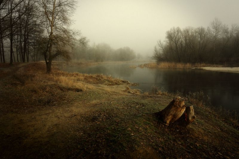 утро зима январь река туман Январское утро.photo preview