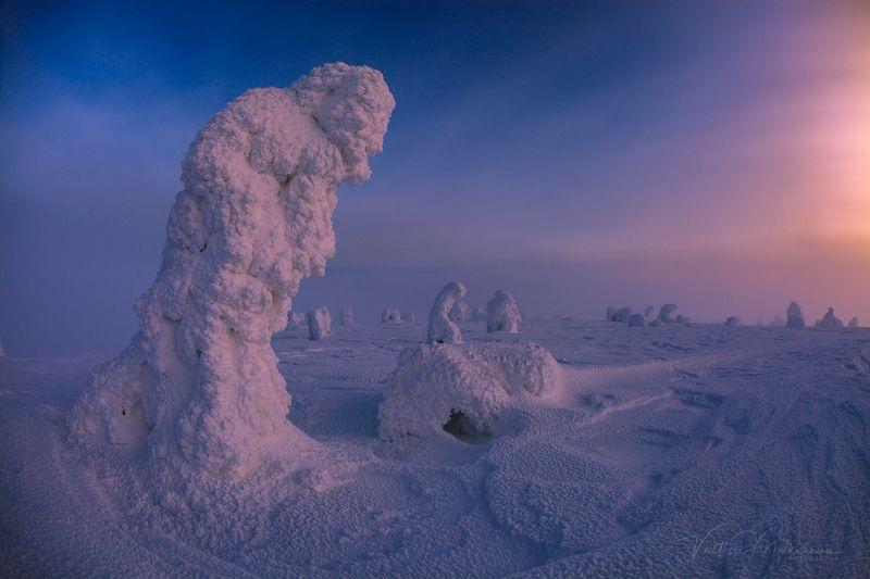 Вечернее солнце Лапландии ...photo preview