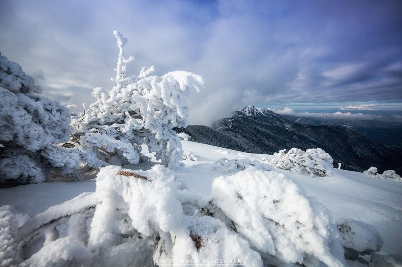frozen, winter, snow, light, poland, mountains, travel, explore, adventure, tatry, awesome, cold, grzes, tatras Cold winter in the Tatrasphoto preview