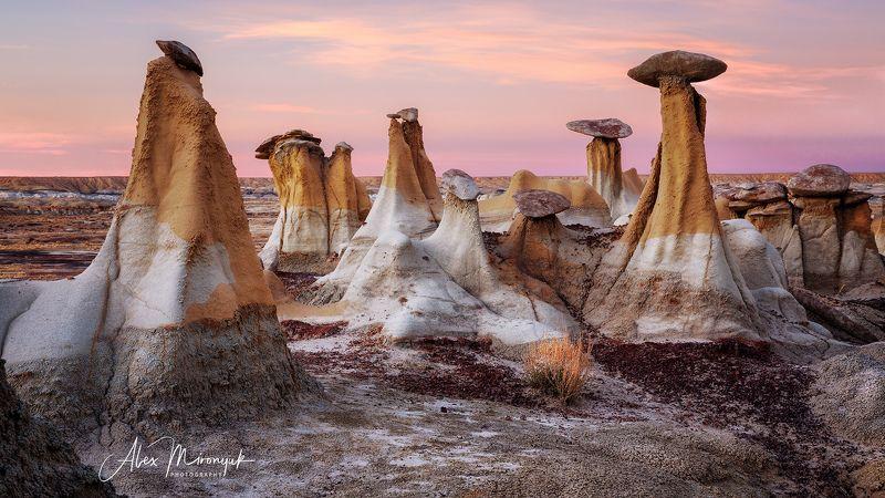 пустыня, сша, худу, закат, сумерки, каменные грибы, глина, эррозия Грибная полянаphoto preview