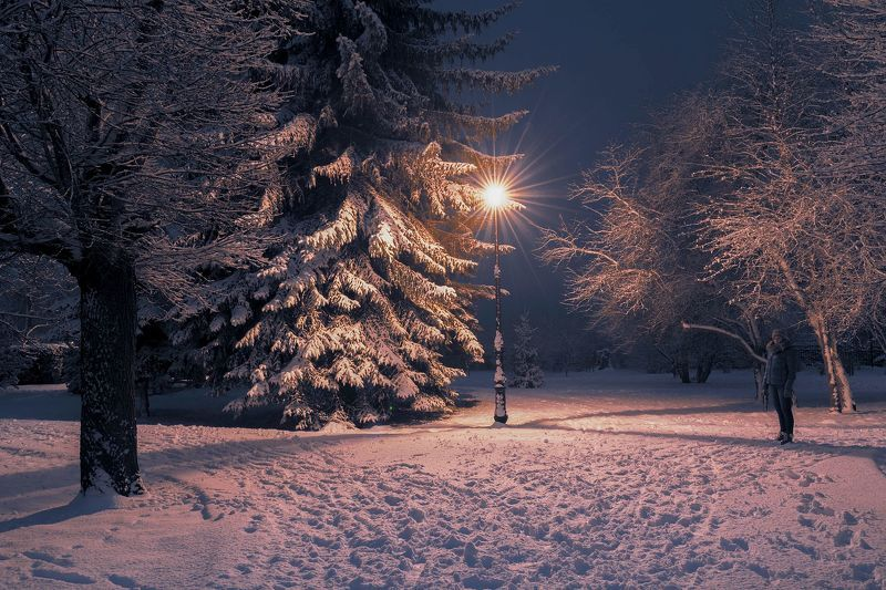 winter,snow,sky,park,nature,landscape,woman,lighting,evening Winterphoto preview