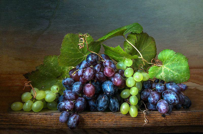красивый натюрморт с виноградом,фрукты,ягоды,художественное фото,искусство,творчество,людмила костюченко. Виноградphoto preview