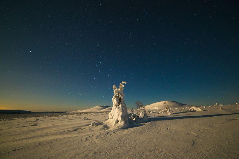 зима, горы, урал, деревья, снег, рассвет, фактура, луна, лунный свет, звезды, орион, плеяды, антон селезнев Лунная ночьphoto preview