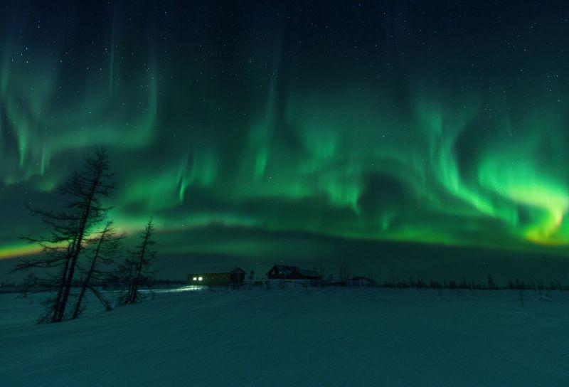 ямал , зима , природа, салехард ,сибирь,  ямал ,север, сияние, аврора,северное сияние \