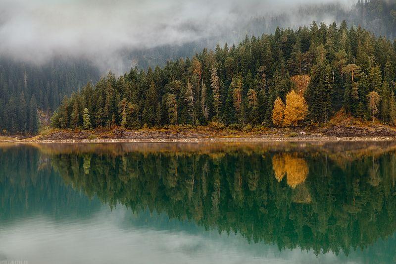 природа, черногория, путешествие, пейзаж,лес, национальный парк, travel, nature, landscape, traveller, dawn, montenegro Черное озероphoto preview