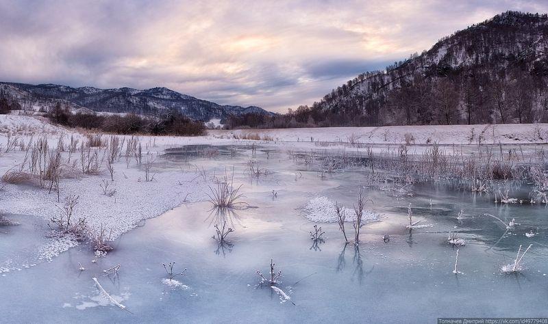 про замерзшее болотце...photo preview