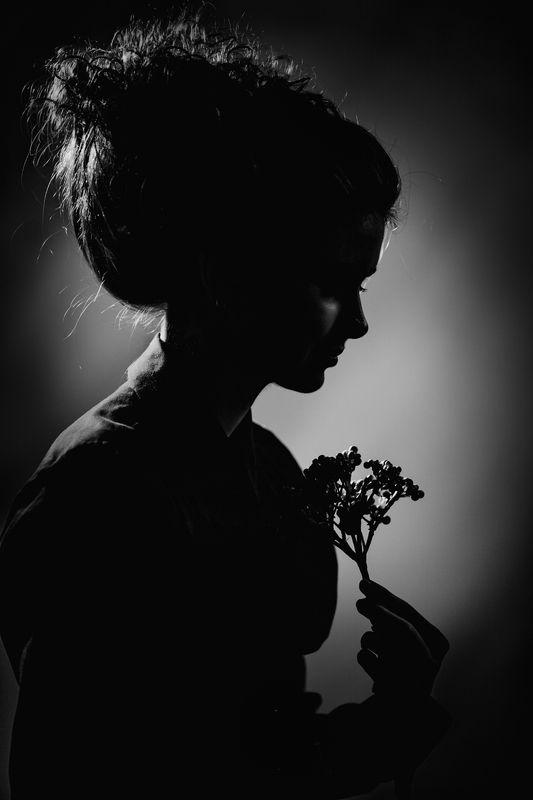 портрет, романтический, старинный, стилизация, ретро, причёска, чёрно-белая, студийная, арт, fine art, свето-тень, головка, люди, девушка, профиль, beauty, davydov Силуэтphoto preview