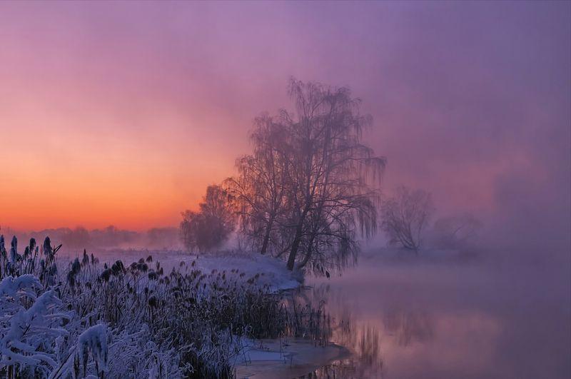 зима, закат, свислочь, беларусь, туман Январский закатphoto preview