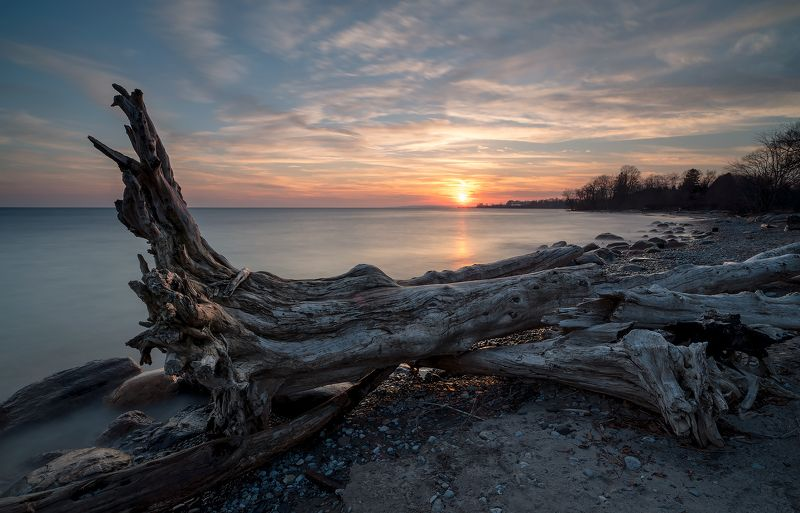 snag, sunset, lake, beach, clouds, waves, коряга, закат, озеро, пляж, облака, волны Sunset beachphoto preview