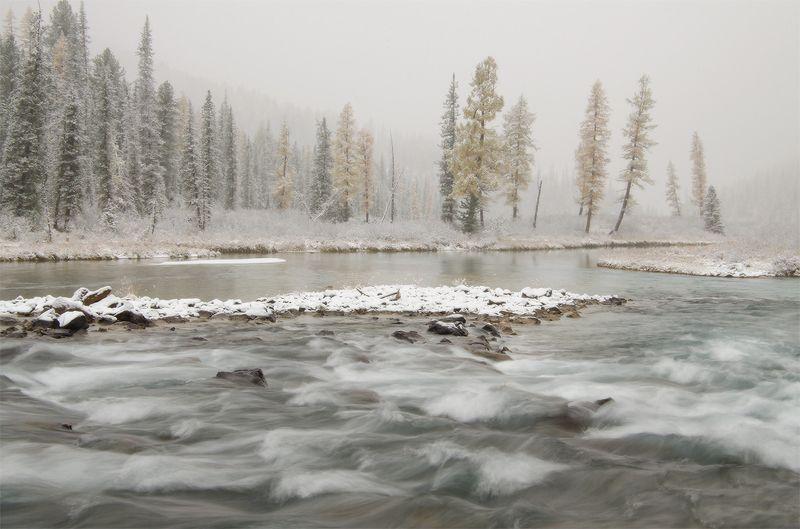 Алтай, Шавла на границе зимы IIphoto preview