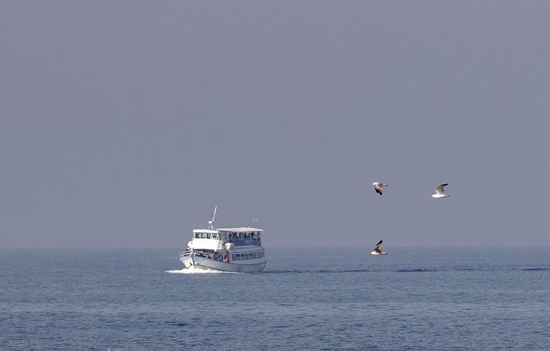 Море, небо, чайки и белый параход.photo preview