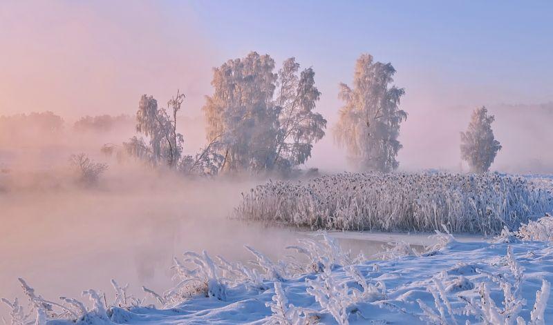 утро, туман, солнце, свислочь Зимнее утро на Свислочиphoto preview