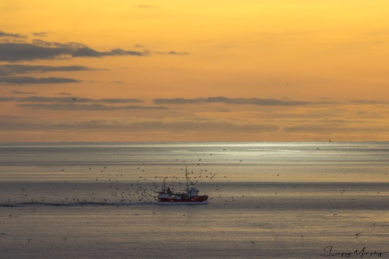 lofotens norway fishing sunset Lonely fisherman\'s boat & sunset. Lofotens. Norway.photo preview