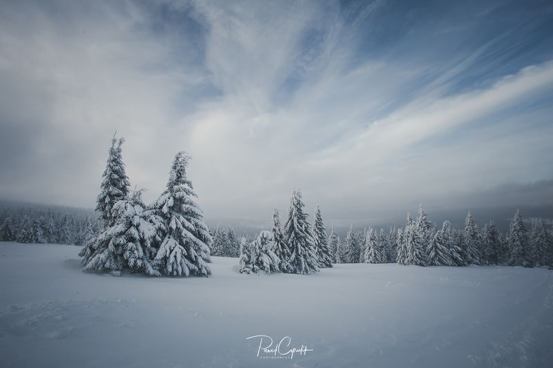Polska, poland, snow, winter Karkonosze Mountainsphoto preview