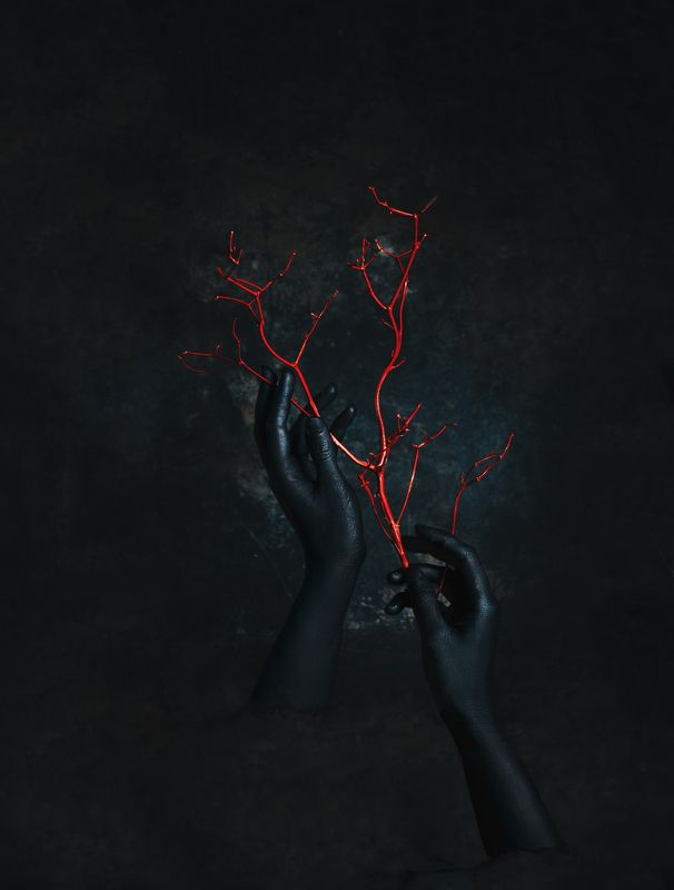 Руки, ветви, красный, черный, креативный, концепт,  LIfephoto preview