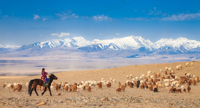 монголия, кочевье Дух свободы!photo preview