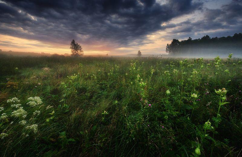 masuria mazury Symhpny of Lightphoto preview