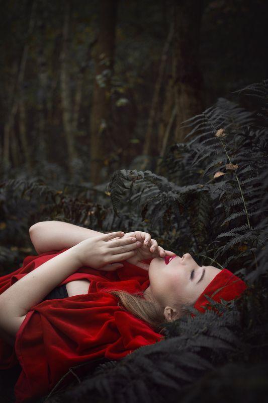 redriddinghood fairytales portrait mood ***photo preview