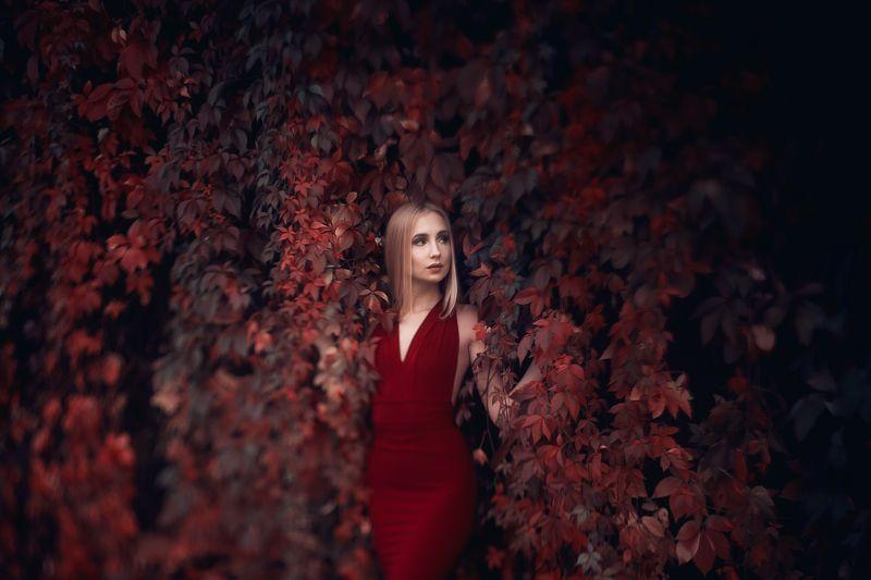 portrait, freelensing, autumn, model beauty nature Juliaphoto preview
