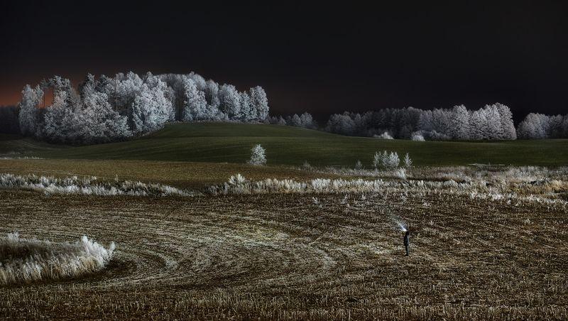 night, meadow, hoarfrost, landscape, winter, poland \