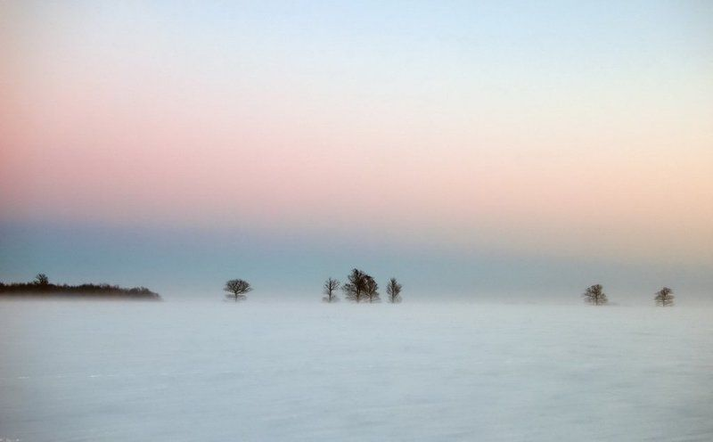 метель,lithuania,evening,snow,after sunset,fog,mist,minimalism,winter Mетель IIphoto preview