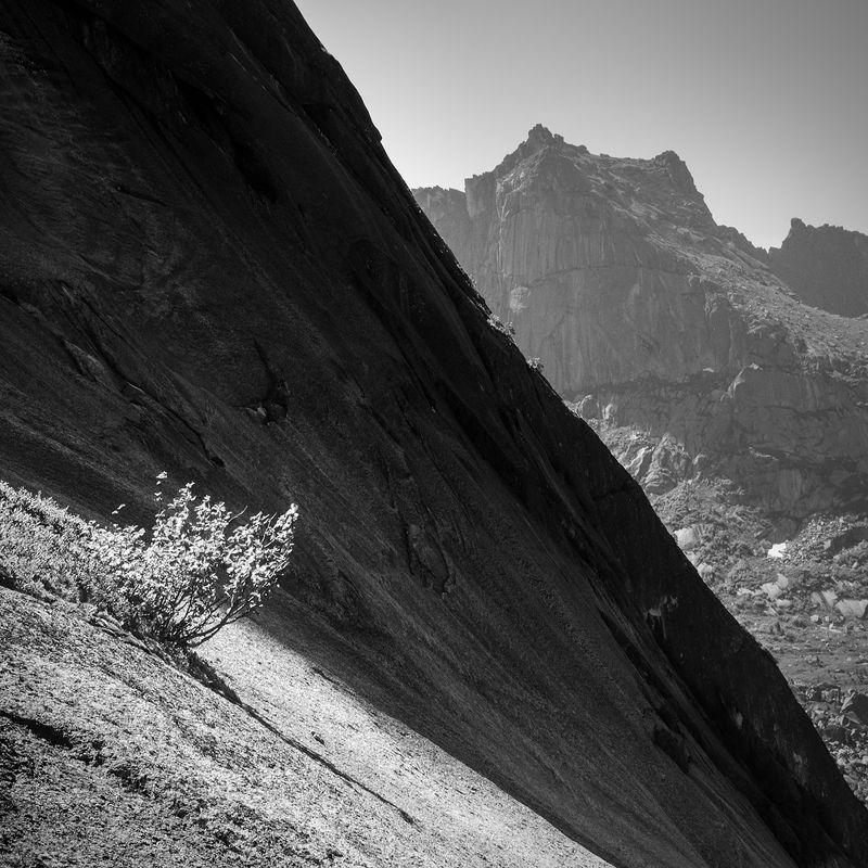 чб, черно-белое, черный, белый, ергаки, красноярский край, природа, пейзаж, путешествия, туризм, тур, скала, куст, дерево, крутой, высокий, большой, горы, хребет В параболеphoto preview