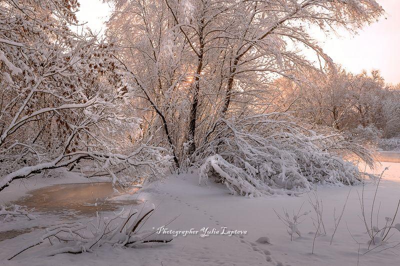 пейзаж,природа,утро,рассвет,зима,февраль,россия,река Февральphoto preview