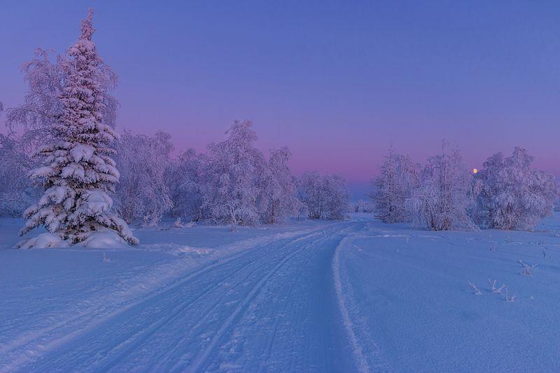 ямал , зима , природа, салехард ,  ямал ,север \