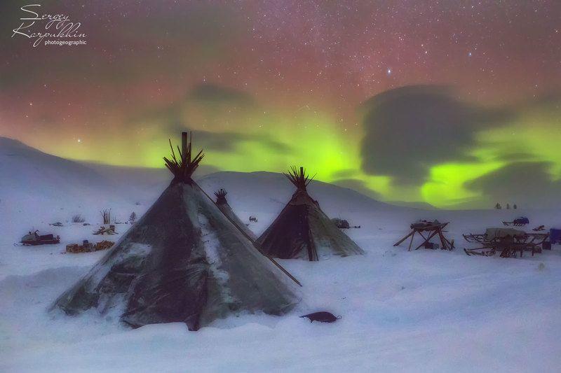 полярный урал, ямал, олени, оленеводы, ненцы Ненецкая девушка, которая мечтала.photo preview