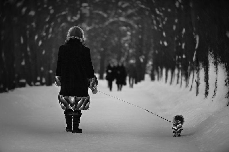 зима, снег, аллея, парк победы, собачка, стиль, стиляги, костюм, модницы Мы с Тамарой ходим парой..photo preview