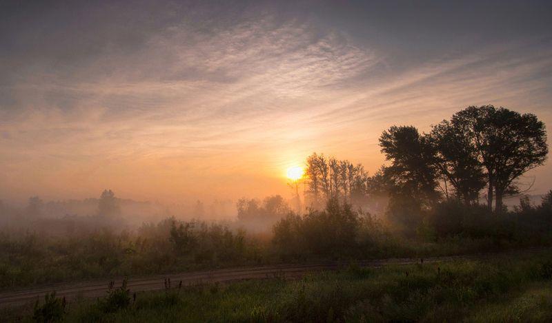 утро, рассвет, туман, солнце, свет, трава, валерий_чичкин Туманным утромphoto preview