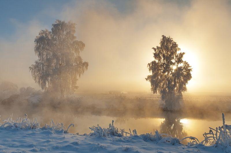 утро, туман, солнце, свислочь Мороз и солнцеphoto preview