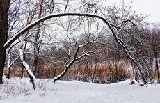 Зимой!