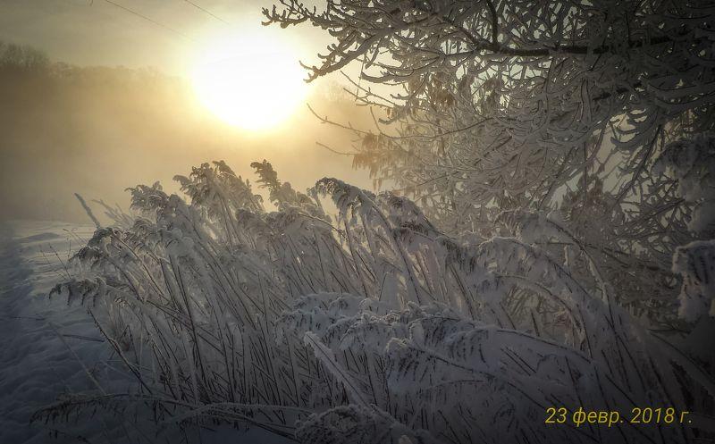 Холодным февральским утром, как утешение красотой мира ...photo preview