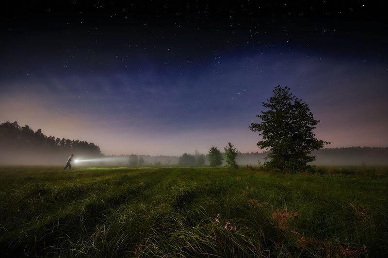 night, forest, mist, human, autoportrait Who shortens his paths...photo preview