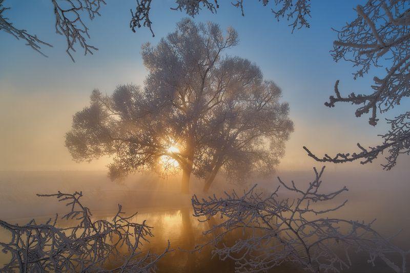 В объятьях утренней прохлады.photo preview