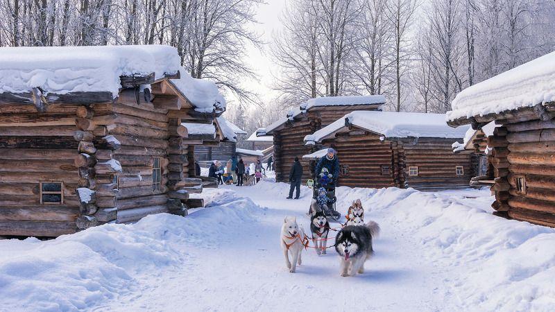 зима, снег, дома_деревянные, избушки, хаски, упряжка, гонки В сказочном городкеphoto preview