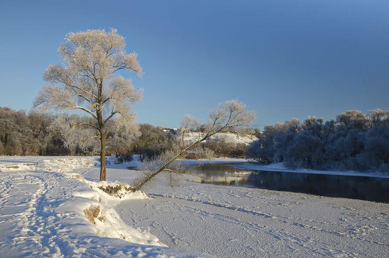природа., зима., утро Морозное утроphoto preview