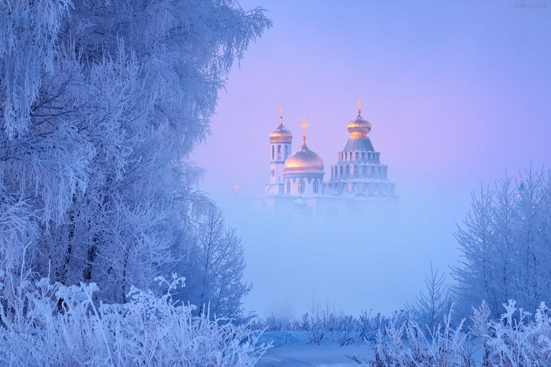 истра, мороз, туман Истринская открытка)photo preview
