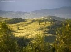 Солнечное утро в Тоскане