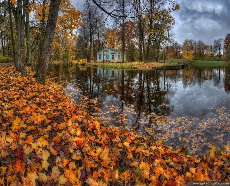 ... Однажды осенью ...photo preview