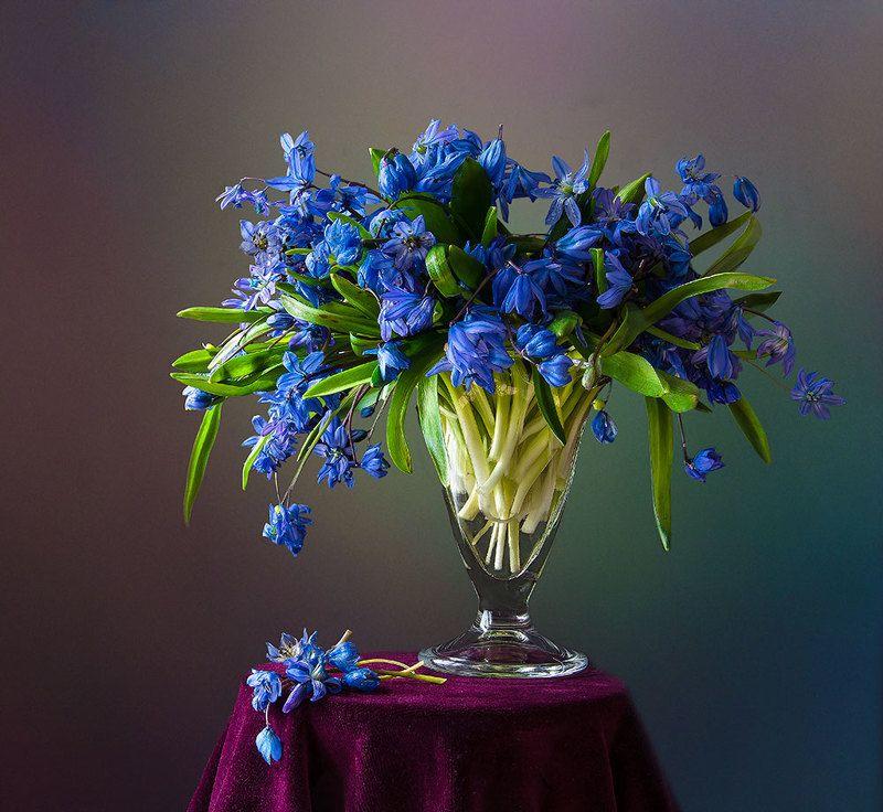 красивый натюрморт с подснежниками,цветы,букет,искусство,творчество,художественное фото,костюченко людмила. Букетик пролесков.photo preview