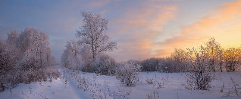 зима вечер мороз Зимний вечерphoto preview
