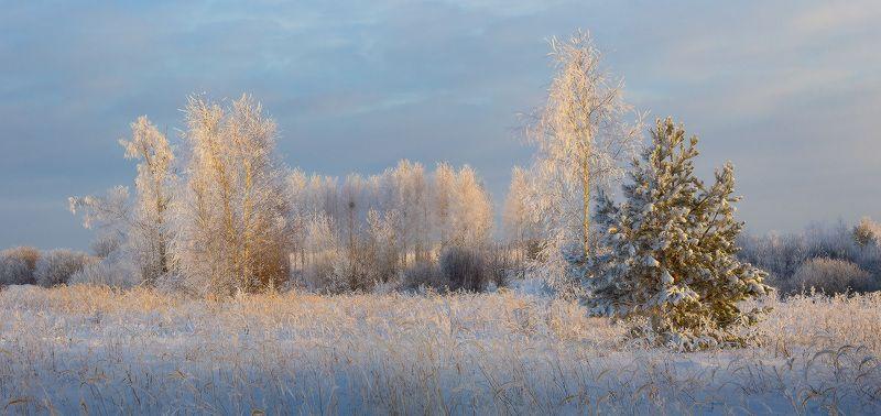 утро мороз солце Преображаясь исчезаетphoto preview
