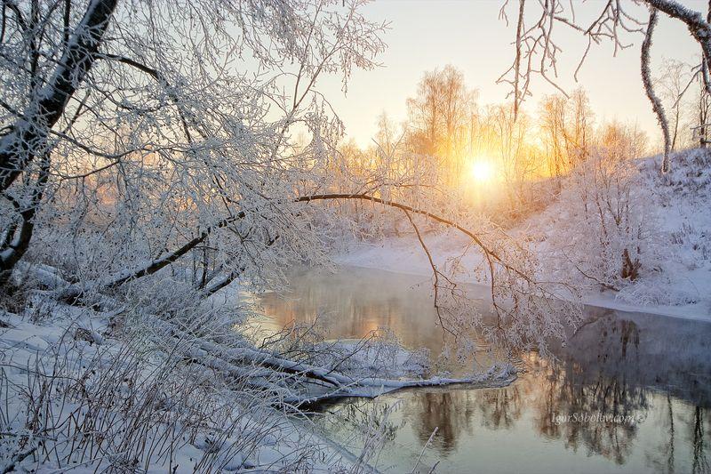 туман, мороз, лед, истра, утро, москва, москва, лучи, река, россия, снег, солнце, зима, fog, frost, ice, istra, morning, moscow, moscow region, rays, river, russia, snow, sun, winter Морозное утроphoto preview