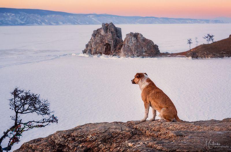 ольхон, байкал, пейзаж остров Ольхон. Байкалphoto preview