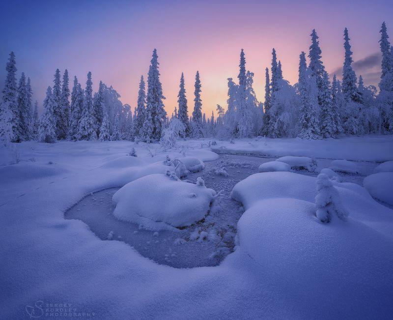 кольскийполуостров, кольский, Тихий, зимний вечерphoto preview