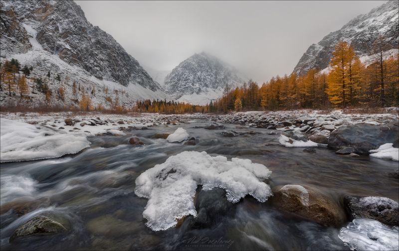 алтай, актру, караташ, осень, горы, туман Туманный Караташ ..photo preview